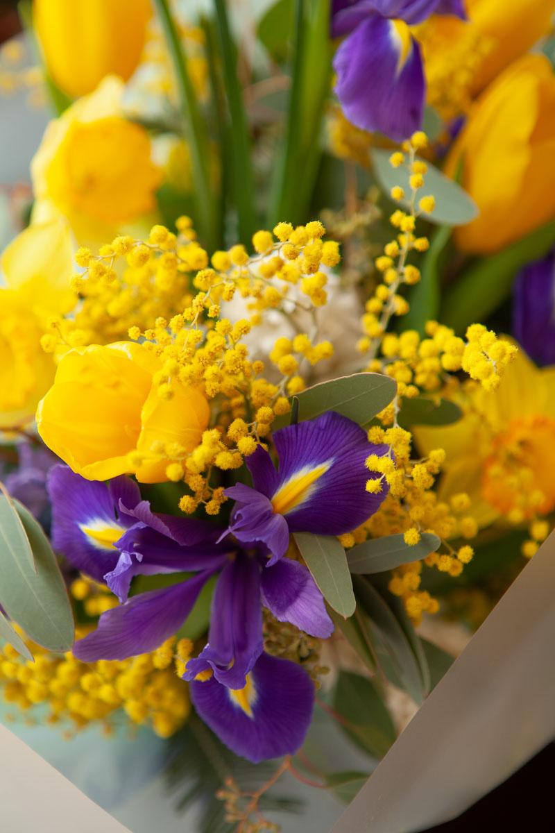 фото красивых букетов мимозы и тюльпанов специфическим типам