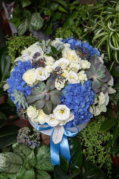 Синяя Гортензия, Роза и Эхиверия в Шляпной коробке купить с доставкой по Саратову