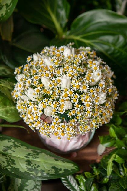 Белые Тюльпаны и Ромашка в Стеклянной Вазе Шар купить с доставкой по Саратову
