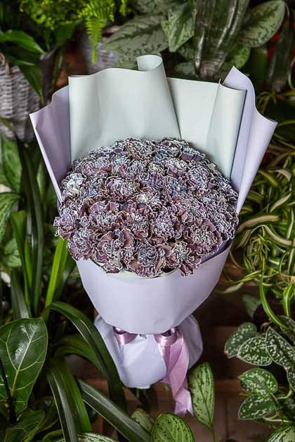 Монобукет из Гвоздики Блэк Молли - planeta.florist