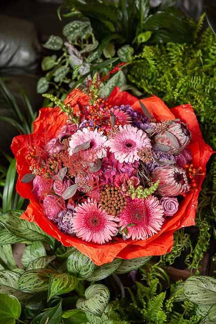 Букет из Герберы, Розы, Протеи и Антиринума - planeta.florist