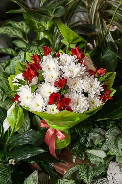 Букет из Хризантемы и Красной Альстромерии - planeta.florist