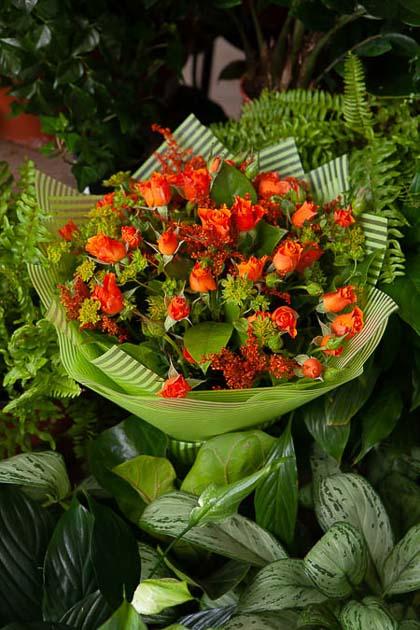 Букет из Оранжевой Кустовой Розы, Солидаго и Буплеорума в Матовой пленке - planeta.florist