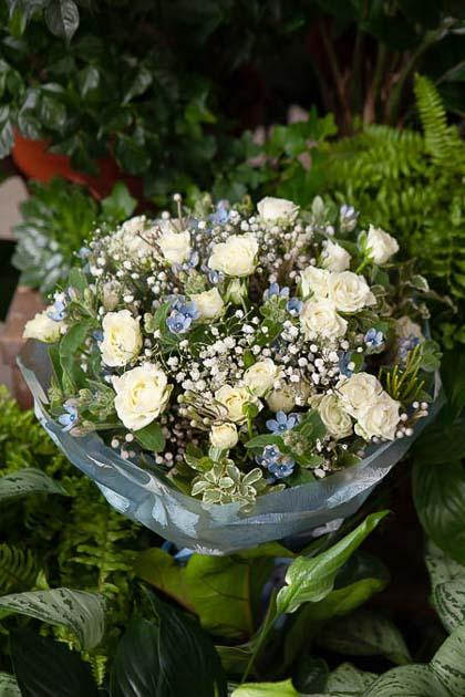 Букет из Белой Кустовой Розы, Гипсофилы и Оксипеталума в Матовой Пленке - planeta.florist