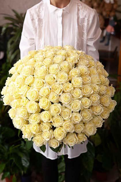 101 Белая Роза — planeta.florist