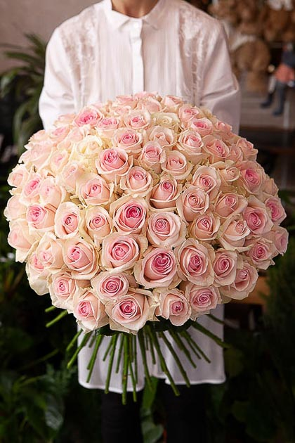 101 Бело-Розовая роза — planeta.florist