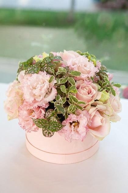Цветы в коробке: Кремовая Роза, Лизиантус и Фиттония Саратов