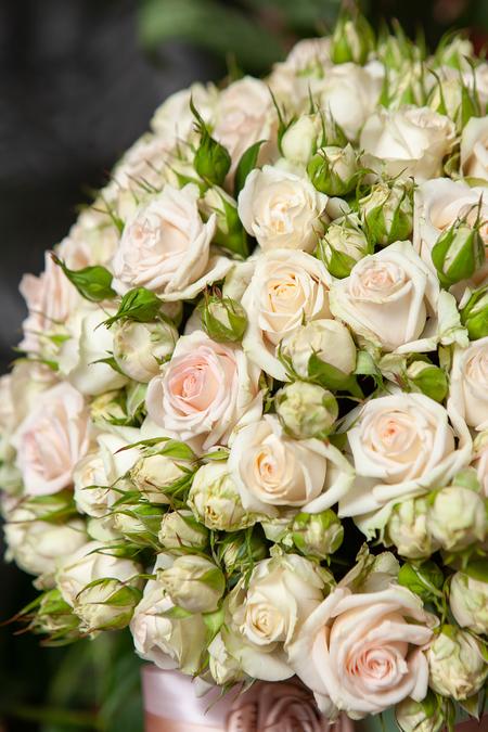 Кремовая Кустовая Роза в Шляпной Коробке - planeta.florist
