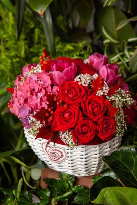 Корзина из Красных Роз, Гортензии, Тюльпанов и Шамелауцемума купить с доставкой по Саратову