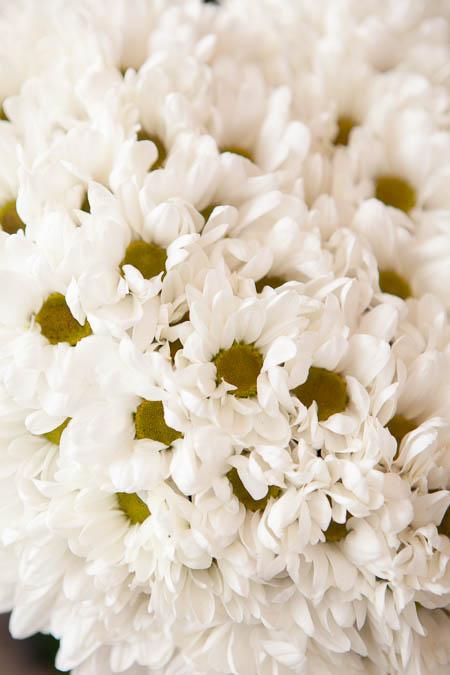 Цветы в форме сердца из Белой Хризантемы на поддоне купить с доставкой - 2