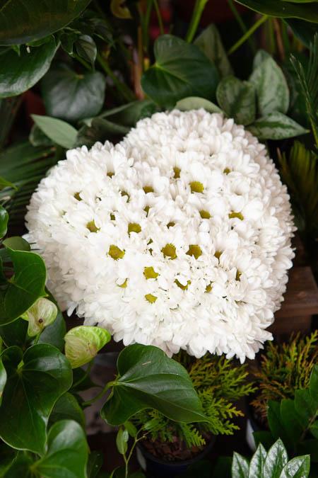 Цветы в форме сердца из Белой Хризантемы на поддоне купить с доставкой - 3
