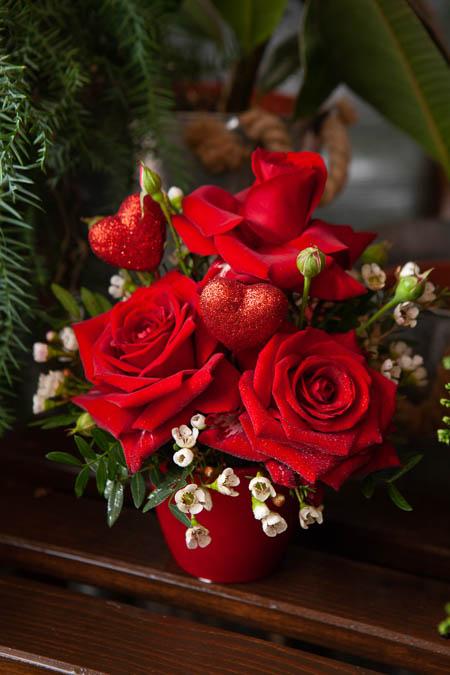 Композиция на 14 Февраля из Красной Розы и Шамелауцемума в Керамическом Кашпо купить с доставкой - 2
